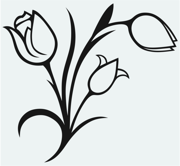 Imagenes De Flores Para Colorear Dibujos De