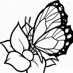 Imagen de Flor para Colorear y compartir y dibujar con tus amigos, familia o alumnos