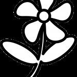 Imagen de Flor para Iluminar y compartir y dibujar con tus amigos, familia o alumnos