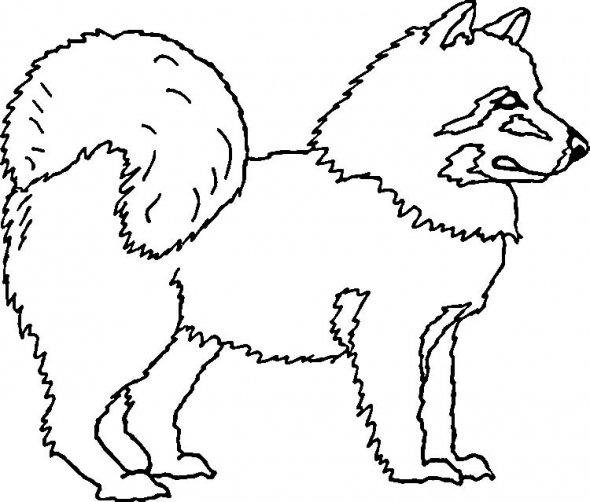 Dibujo de Cachorro para dibujar e iluminar - Dibujos De
