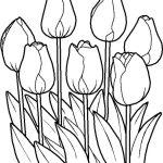 Imagen de Flor para Adornar y colocar en tu casa